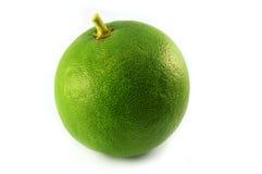 Grapefruit green. Green grapefruit isolated on white background Stock Images