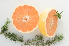 Grapefruit Halves and Rosemary Sprigs royalty free stock images