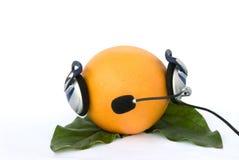 Grapefruit in headphone Royalty Free Stock Images