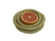 Grapefruit In Rope Ring Royalty Free Stock Photos