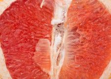 Grapefruit inside closeup macro Royalty Free Stock Photo