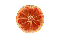 Grapefruit inside. Stock Photos