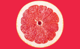 Grapefruit. Isolated on red background royalty free stock photography