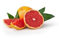 Grapefruit isolated on white background Stock Image