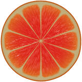 Grapefruit juice slice. Stock Images