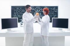Grapefruit laboratory analysis Stock Photo