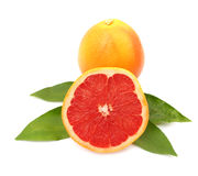 Grapefruit with leaves Royalty Free Stock Photos