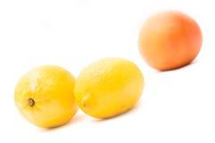 Grapefruit and lemon. Ripe juicy grapefruit and lemon isolated royalty free stock photography