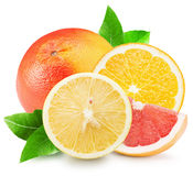 Grapefruit, lemon and orange isolated on the white background Royalty Free Stock Photo