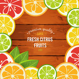 Grapefruit, lime, lemon and orange with mint leaves Stock Images