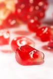 Grapefruit macro Stock Photography
