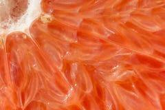 Grapefruit macro Royalty Free Stock Photo