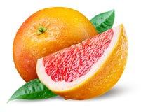 Grapefruit met plak op wit stock afbeelding