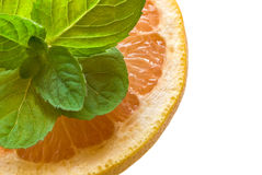 Grapefruit and mint Royalty Free Stock Image