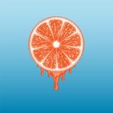 grapefruit odizolowywający plasterka biel ilustracja wektor