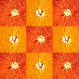 Grapefruit and orange Stock Photos