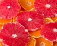 grapefruit and orange Stock Photography