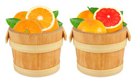 Grapefruit and orange in the bucket Stock Images
