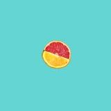 Grapefruit and orange citrus fruit halves on blue Royalty Free Stock Photo