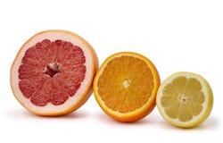 Grapefruit, orange and lemon Stock Images