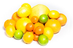 Grapefruit, orange, lemon, lime Royalty Free Stock Images