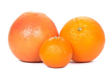Grapefruit, orange, tangerine Royalty Free Stock Image