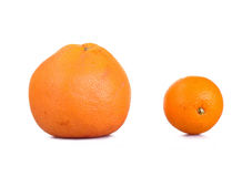 Grapefruit and orange Royalty Free Stock Photo