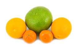 Grapefruit oranges tangerines Royalty Free Stock Photo