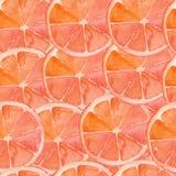 Grapefruit pattern Stock Photography