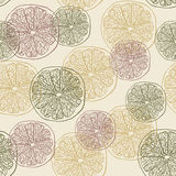 Grapefruit pattern Royalty Free Stock Photos