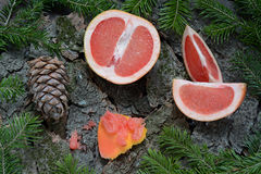 Grapefruit and pine cones stock images