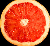 Grapefruit. Red grapefruit cut in the middle Royalty Free Stock Photos