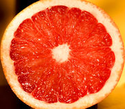 Grapefruit. Red grapefruit cut in the middle Stock Photography