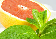 Grapefruit on the rocks Stock Photography