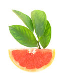 Grapefruit ruby red Royalty Free Stock Images
