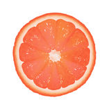 Grapefruit Segment Stock Photography