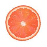 Grapefruit Segment Stock Photography