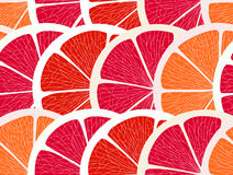 Grapefruit segments Stock Images
