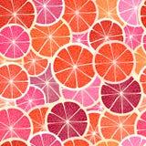 Grapefruit segments Royalty Free Stock Photo