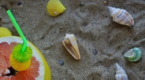 A grapefruit with shells on the sand, a cocktail of exotic fruits and natural juice, a tube for cocktails. A grapefruit with shells on the sand, a cocktail of royalty free stock photos