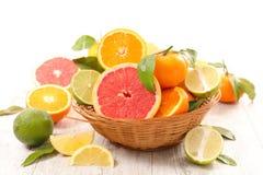 Grapefruit, sinaasappel en citroen stock fotografie