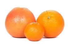 Grapefruit, sinaasappel, mandarijn Royalty-vrije Stock Afbeelding