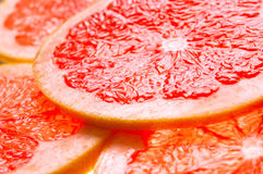 Grapefruit slice backgound Stock Image
