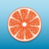 Grapefruit slice Royalty Free Stock Photos