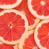 Grapefruit slice background Royalty Free Stock Image