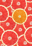 Grapefruit with slice detail Royalty Free Stock Images