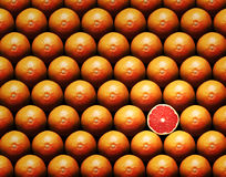 Grapefruit slice between group Stock Photos