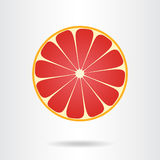 Grapefruit slice icon. Vector illustration Stock Photo