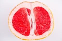 Grapefruit. Slice grapefruit isolated on white background Stock Images