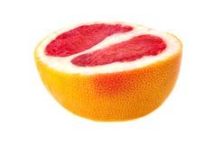 Grapefruit slice Stock Photography